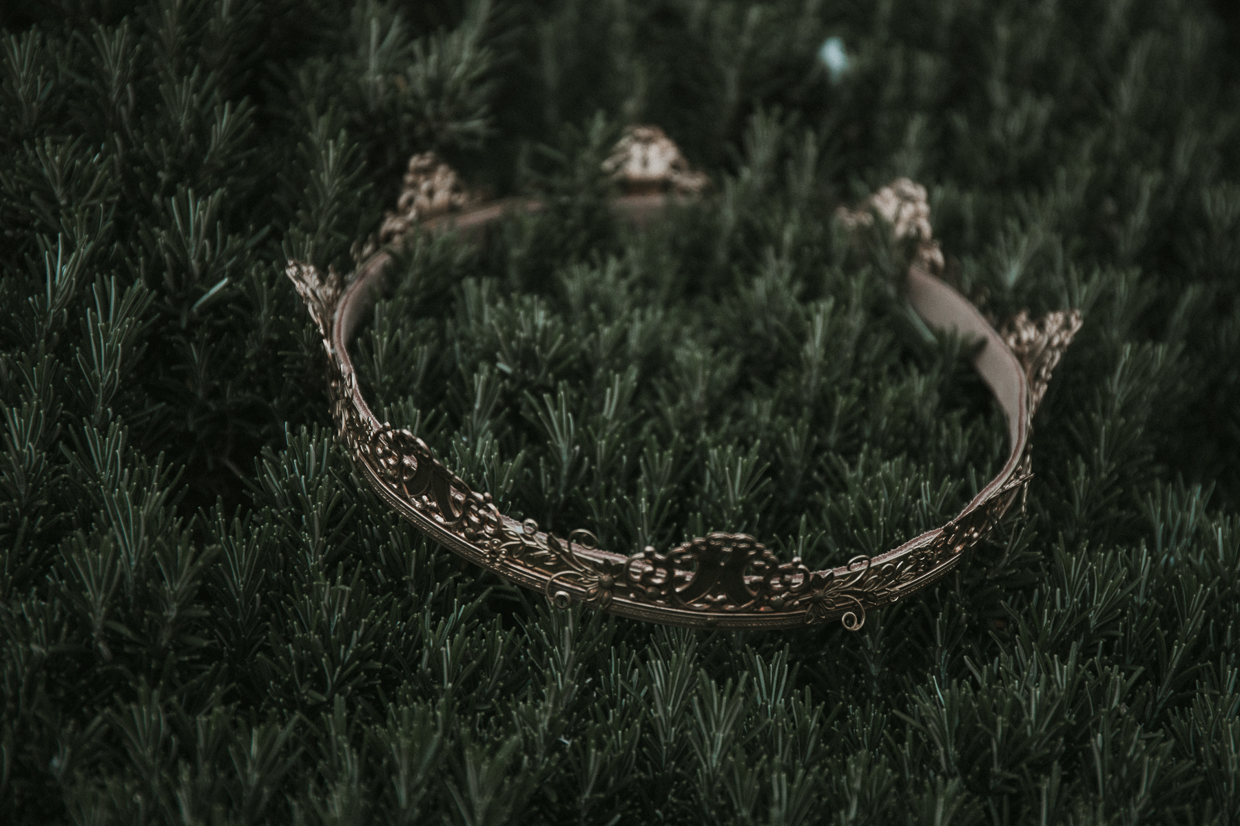 inspiring details crown